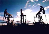 В 2016 году на севере Новосибирской области возобновят нефтедобычу